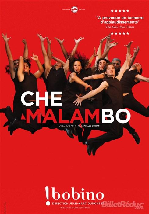Che Malambo, l'Argentine à Bobino
